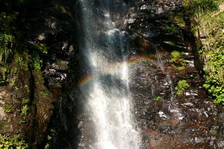 福井県の滝