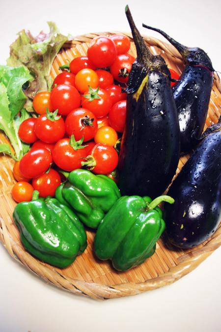 プランター菜園の収穫