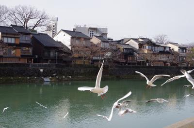 浅野川.jpg