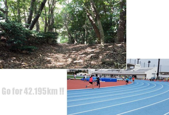 金コーチのマラソントレーニング【その5】初めてのクロスカントリー走とトラック練