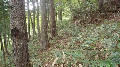 s-沼13.jpg
