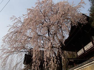 s-小坂の寺.jpg