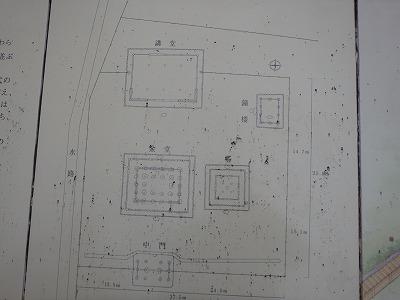 s-杉4.jpg