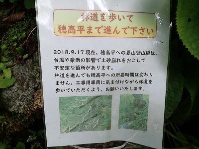 s-松50.jpg