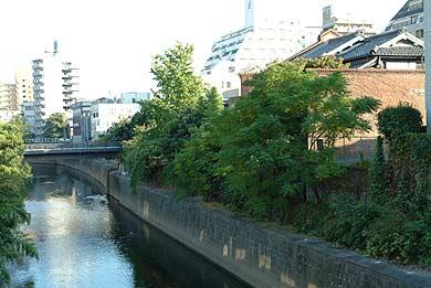 西村家(旧清永家)の北側の坪井川