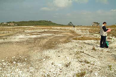 島のほとんどは白い平原になっている