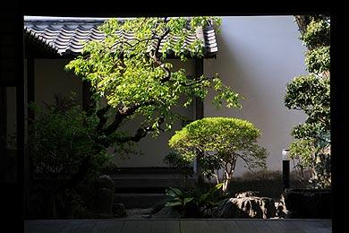 旧三省銀行の座敷奥にある中庭