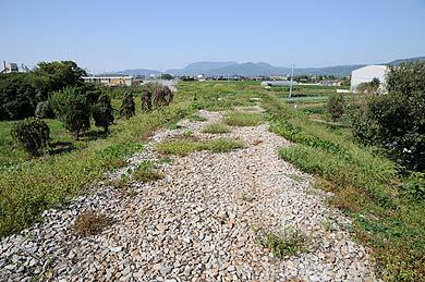 キリンビール福岡工場引込線の築堤跡の上部