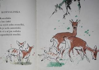 チェコの絵本 RAJ DOMOVA / 絵:Adolf Zabransky