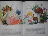 1963年 Das Erdbeermaennchen / 絵:Janusz Grabianski