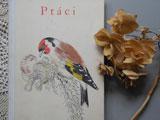 チェコ語の古い図鑑 Ptaci 1 〜鳥〜