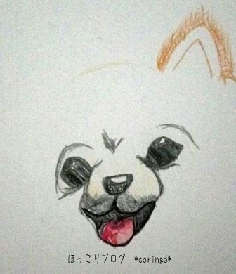 チワワのリコのイラスト 絵