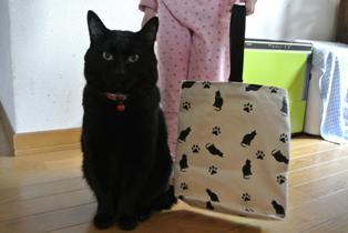 kitty シューズバッグ 帆布