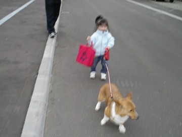 僕が散歩に連れて行きますby蘭さん