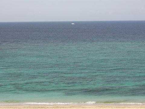 海に真っ白い?船