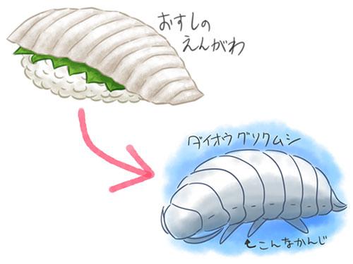 えんがわ→ダイオウグソクムシ