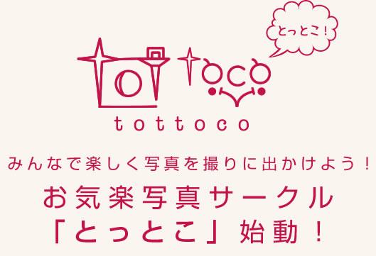 blogttl_tottoko.jpg