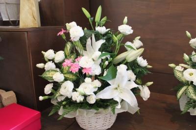 ペット お供え お花 いわき市 小名浜の花屋 花国湘南台店