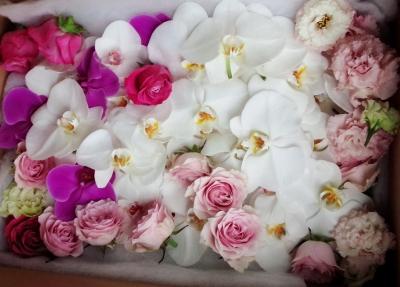納棺花 葬儀 安い 家族葬 生花祭壇 いわき市 小名浜の花屋 花国湘南台店