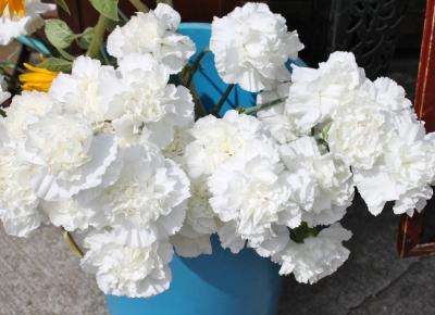 震災 白のカーネーション お供えのお花 いわき市 お花の花屋 花国湘南台店