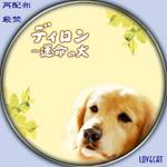 ディロン〜運命の犬-汎用
