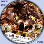 noragoyomi-sp.jpg