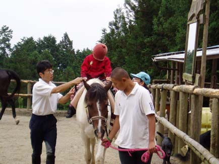 N子の乗馬
