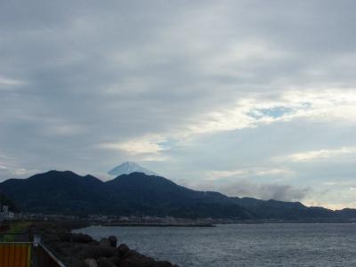 由比PAからの富士山