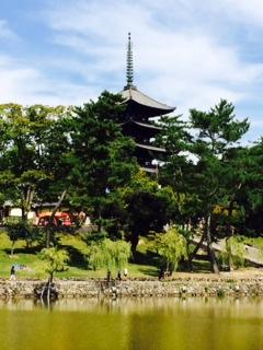 猿沢の池からの五重塔