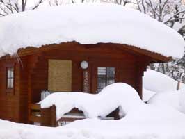 雪まみれのスノーグッズの森