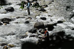 姫川で釣るFRM様