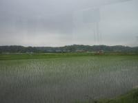 路線バス乗りつぶし 小湊鐵道編 その5   「マイナーな」路線 ...