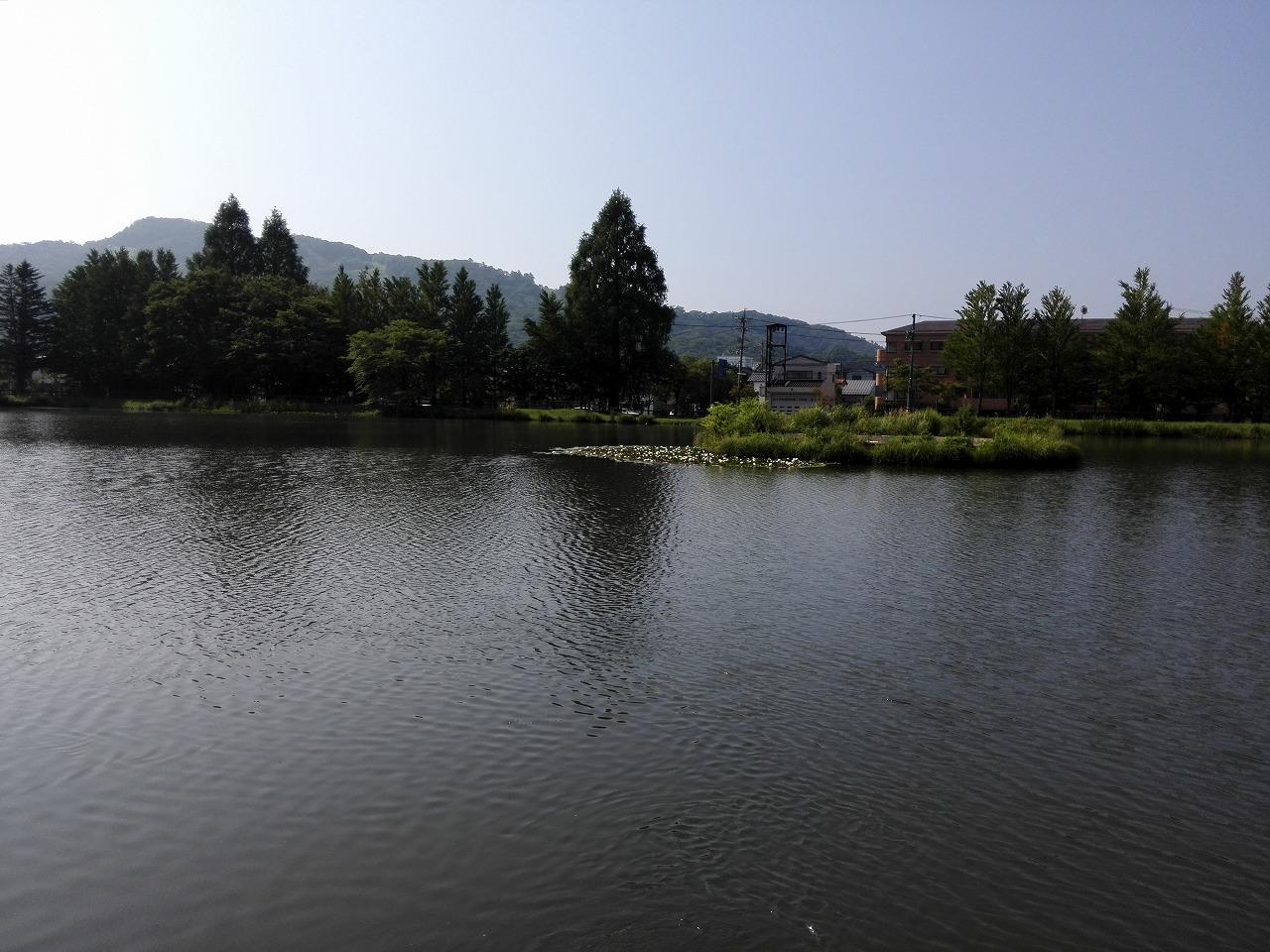 s-2015矢ケ崎公園 (4).jpg