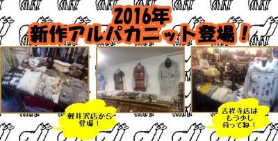 2016年軽井沢にアルパカニット登場.jpg