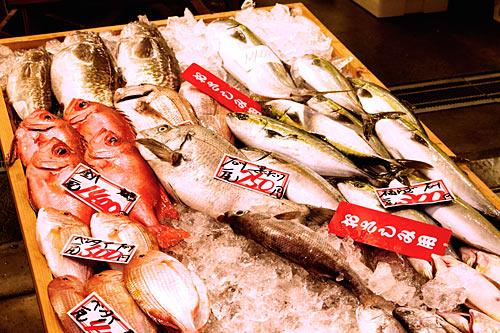 金沢:近江町魚市場の魚たち