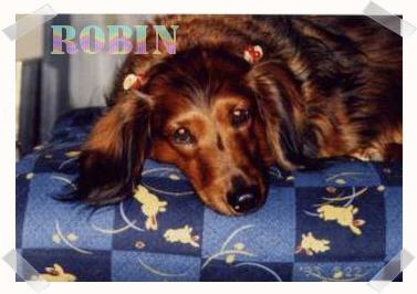 ロビンでーす^^