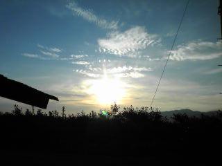 20100828今日の朝仕事