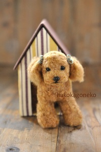 犬小屋 w/dog