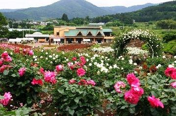 flowerpark