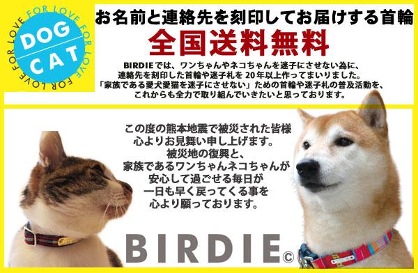 BIRDIE迷子にさせない首輪と迷子札送料