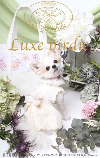 Luxebirdie2017  ss