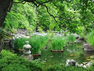 長谷寺の和庭1