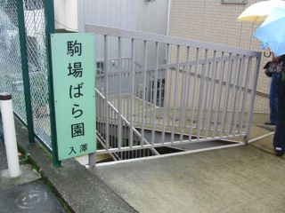 駒場薔薇園