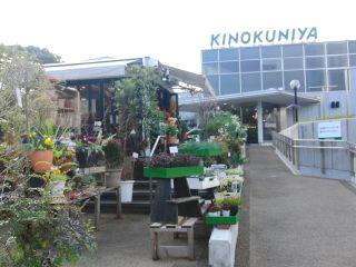 KINOKUNIYAのお花屋さん