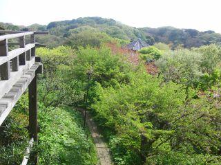 らい亭からの眺め2
