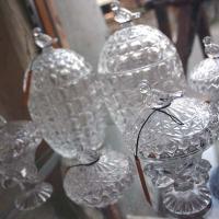 鳥のガラスケース