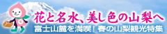 JR東日本キャンペーンバナー
