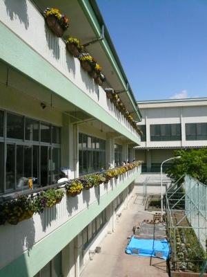 市立御坂西小学校
