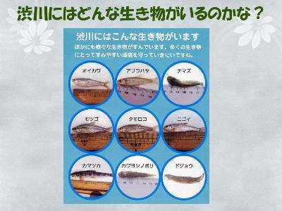 渋川の話スライドサムネイル