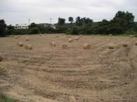 牧草を丸めました。